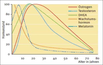 gesundheit testosteron ein h ufig untersch tztes hormon. Black Bedroom Furniture Sets. Home Design Ideas